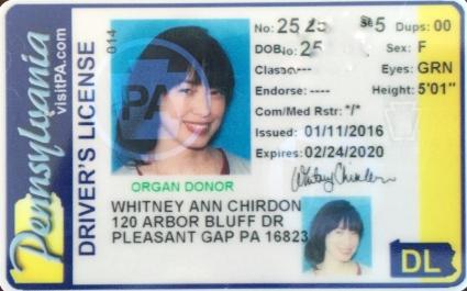 Final License
